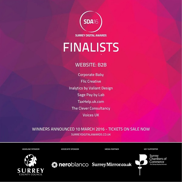 B2B Website finalists SDA2016